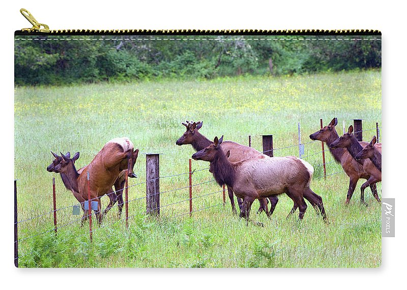 Animal Carry-all Pouch featuring the photograph Herd Of Elk Leaping - Western Oregon by Randall Ingalls