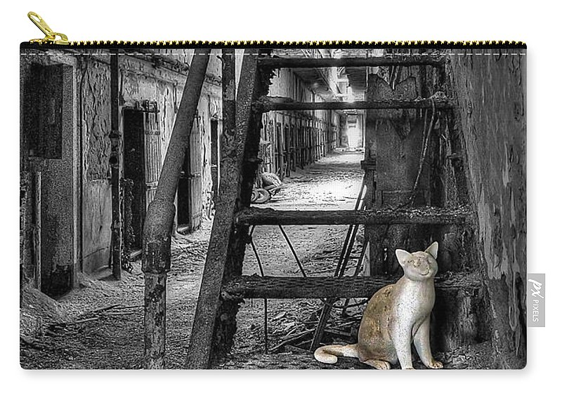 Abandoned Carry-all Pouch featuring the photograph Here Kitty Kitty Kitty... by Evelina Kremsdorf