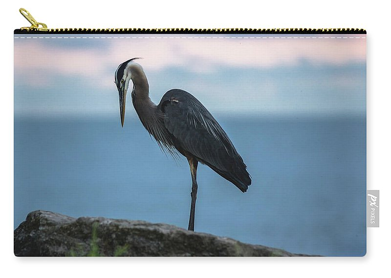 Heron Carry-all Pouch featuring the photograph Heron In Colchester by Cale Best