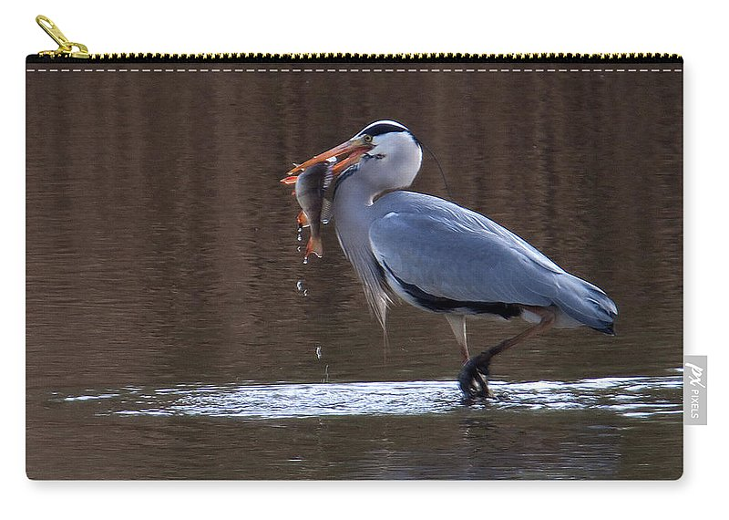 Heron Carry-all Pouch featuring the photograph Heron With Perch by Bob Kemp