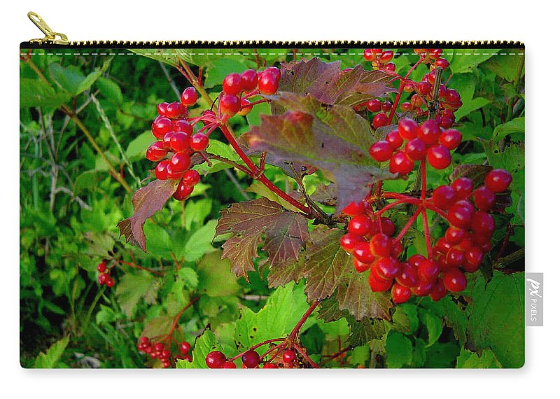Hi Bush Cranberries Berries Carry-all Pouch featuring the photograph Hi Bush Cranberry Close Up by Joanne Smoley