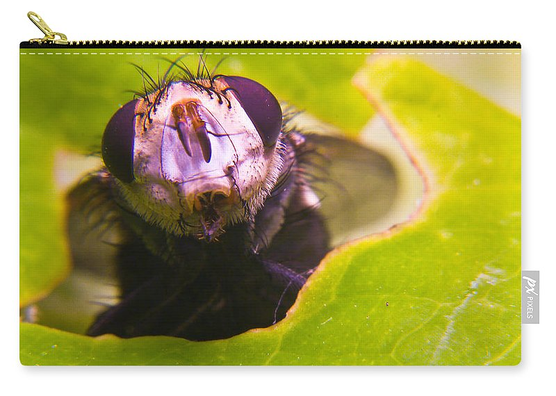 Fly Carry-all Pouch featuring the photograph Hi There by Douglas Barnett