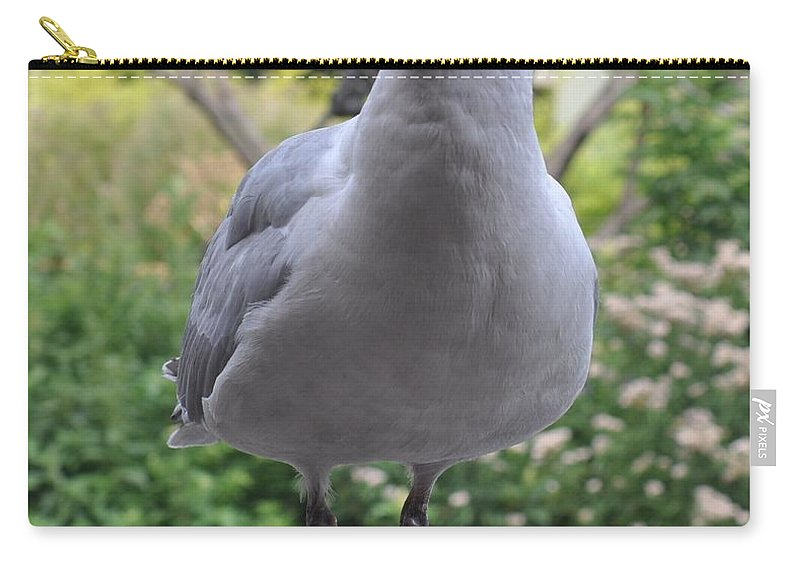 Seagull Carry-all Pouch featuring the photograph Hi There by Eduard Meinema