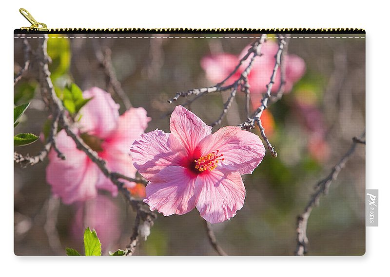 Hibiscus Carry-all Pouch featuring the photograph Hibiscus by American School