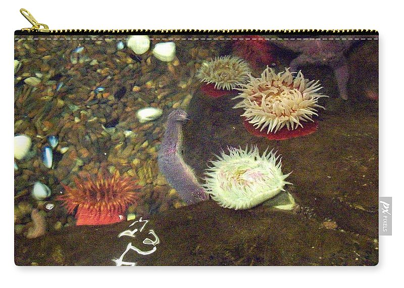 Scene Carry-all Pouch featuring the photograph Hidden Writings by Mary Mikawoz