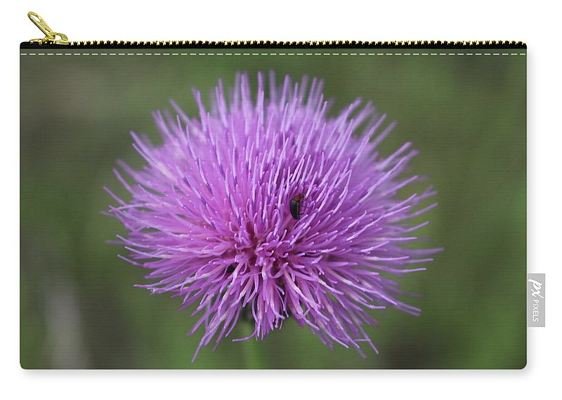 Flowers Carry-all Pouch featuring the photograph Hide And Seek by Brock Tinney