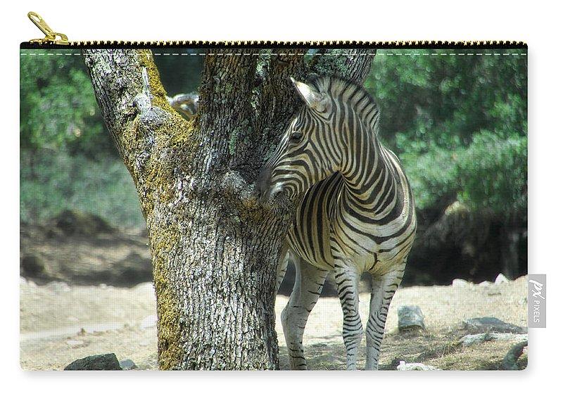 Zebra Carry-all Pouch featuring the photograph Hide And Seek by Donna Blackhall