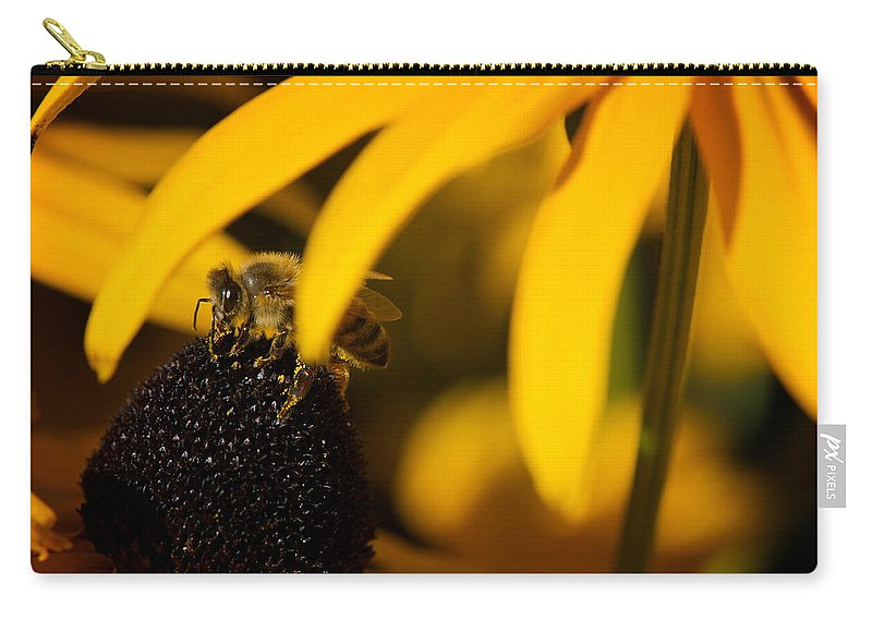 Hide Carry-all Pouch featuring the photograph Hide And Seek by Lisa Knechtel