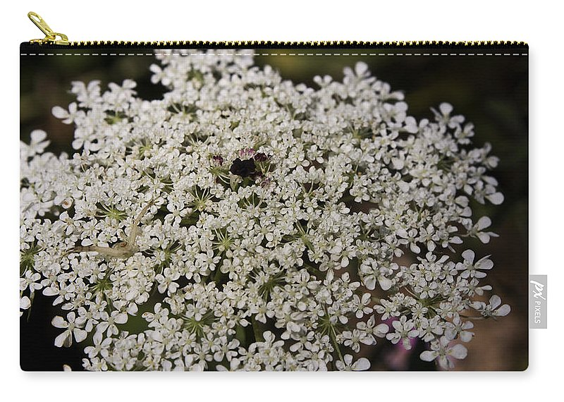 Queen Carry-all Pouch featuring the photograph Hiding In The Lace by Teresa Mucha