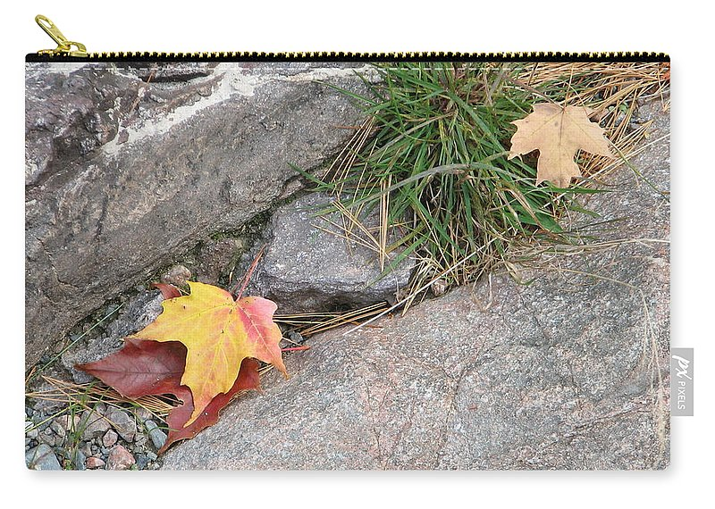 Fall Carry-all Pouch featuring the photograph Hiding by Kelly Mezzapelle