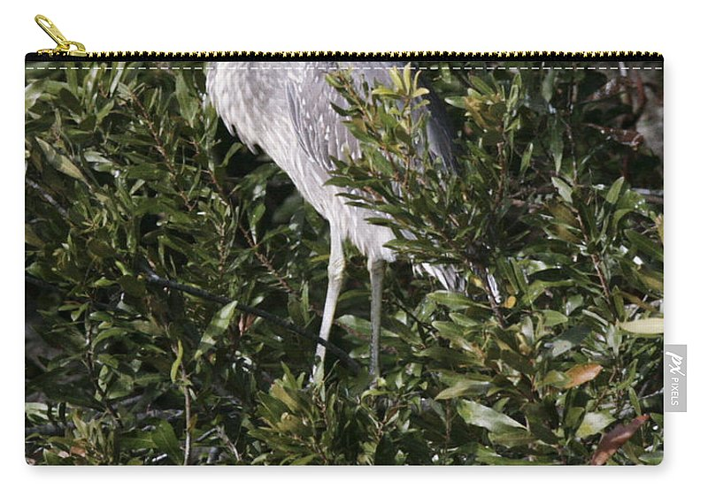 Bird Carry-all Pouch featuring the photograph Hiding by Phill Doherty