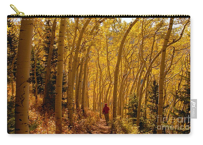 Fall Carry-all Pouch featuring the photograph Hiking In Fall Aspens by David Lee Thompson