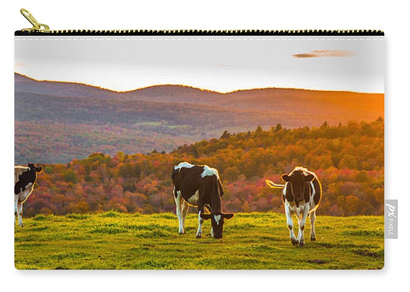 Cows Carry-all Pouch featuring the photograph Hilltop Herd by Tim Kirchoff
