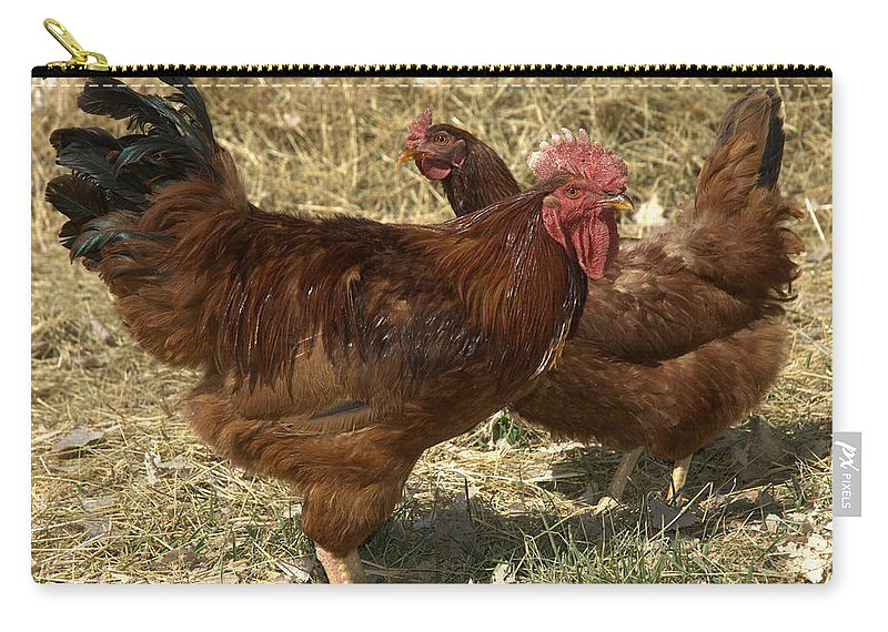 Chickens Carry-all Pouch featuring the photograph Him And Her by Jerry McElroy
