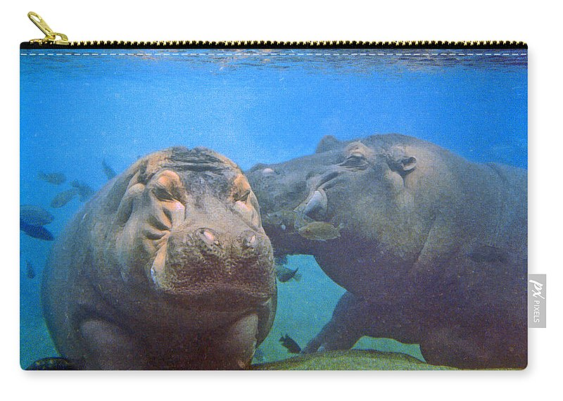 Animals Carry-all Pouch featuring the photograph Hippos in Love by Steve Karol