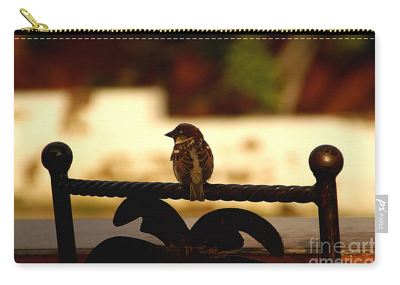 Bird Carry-all Pouch featuring the photograph His Eye Is On The Sparrow by Linda Shafer
