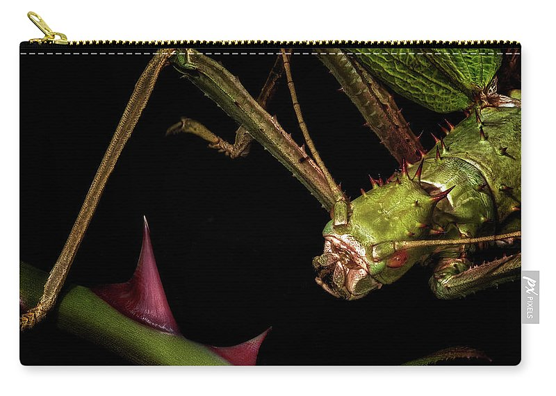 Macro Carry-all Pouch featuring the photograph Hmmm, Interesting by Robert Storost