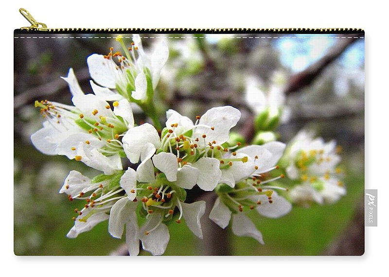 Hog Plum Carry-all Pouch featuring the photograph Hog Plum Blossoms by J M Farris Photography