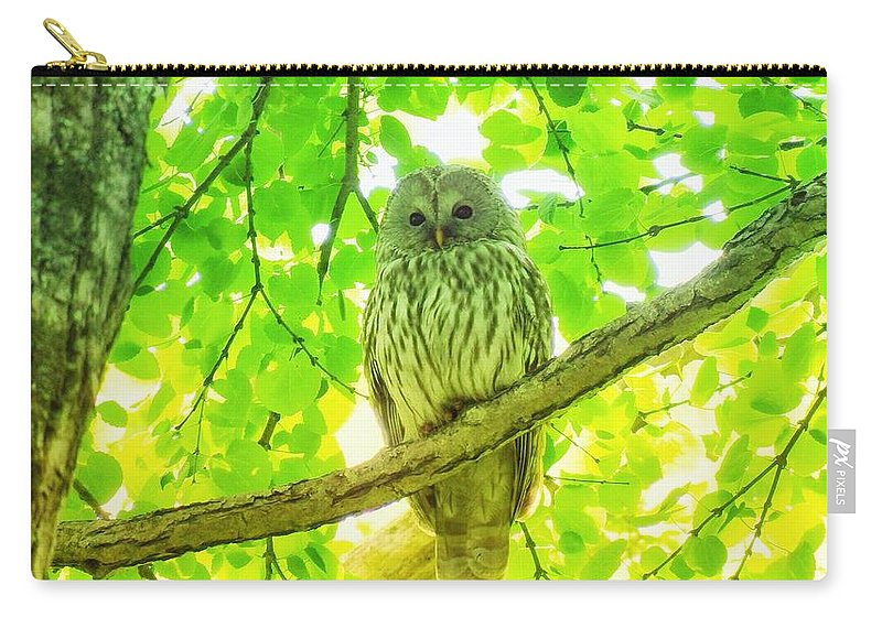 Hokkaido Fral Owal Carry-all Pouch featuring the photograph Owl by Yutaka Mori