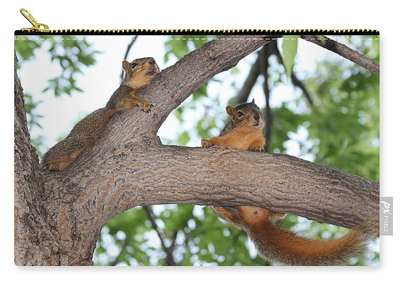 Squirrel Carry-all Pouch featuring the photograph Hold On by Lori Tordsen