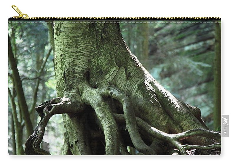 Trees Carry-all Pouch featuring the photograph Hold On To Me. by Amanda Barcon