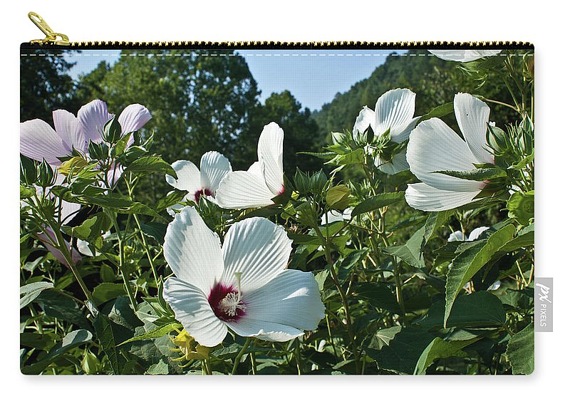 Hollyhock Carry-all Pouch featuring the photograph Hollyhock At Sunrise by Douglas Barnett