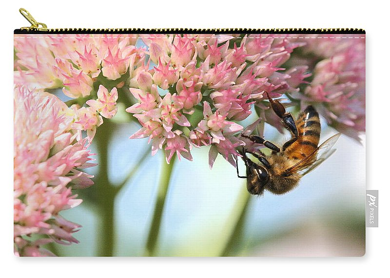 Bee Carry-all Pouch featuring the photograph Honey Bee 2 by Angela Rath