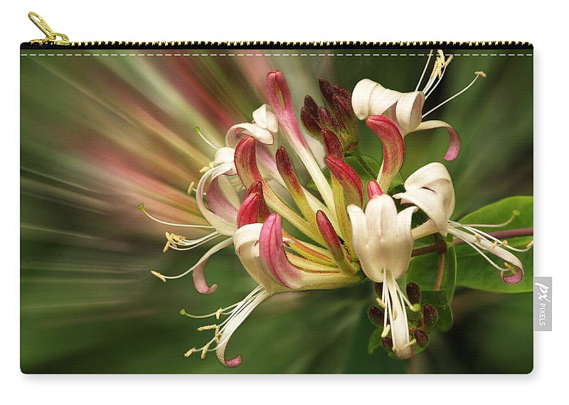 Honeysuckle Carry-all Pouch featuring the photograph Honeysuckle Breeze by Gill Billington