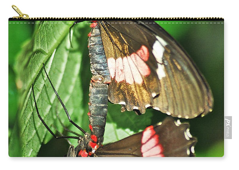 Wildlife Carry-all Pouch featuring the photograph Hook Up by Michael Peychich