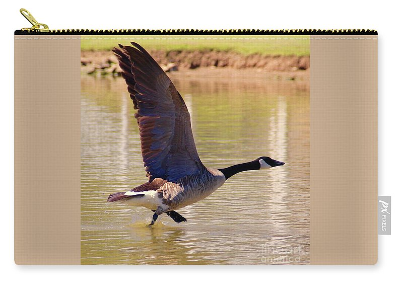 Wing Carry-all Pouch featuring the photograph Hop Skip Fly by Yvette Winder