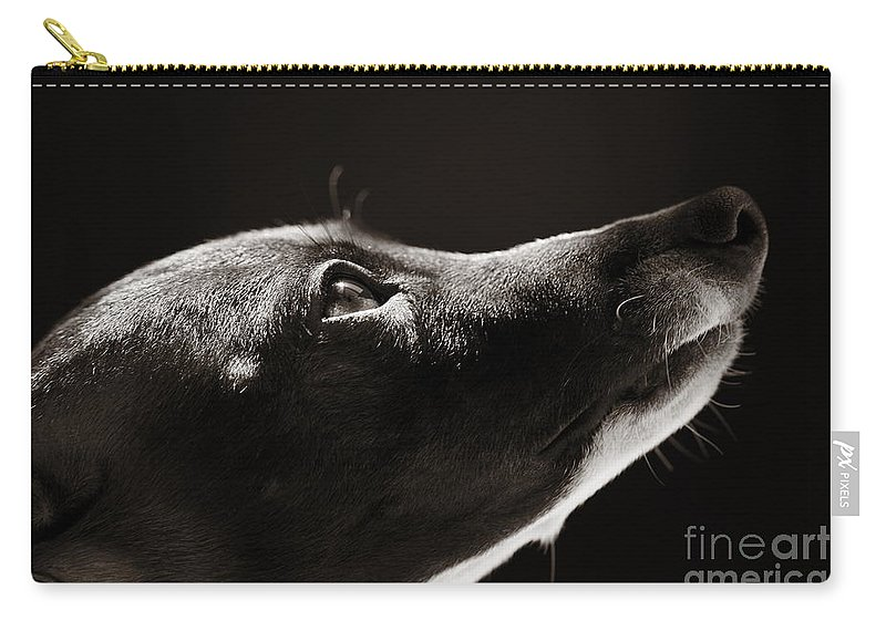 Peaceful Carry-all Pouch featuring the photograph Hopeful by Angela Rath