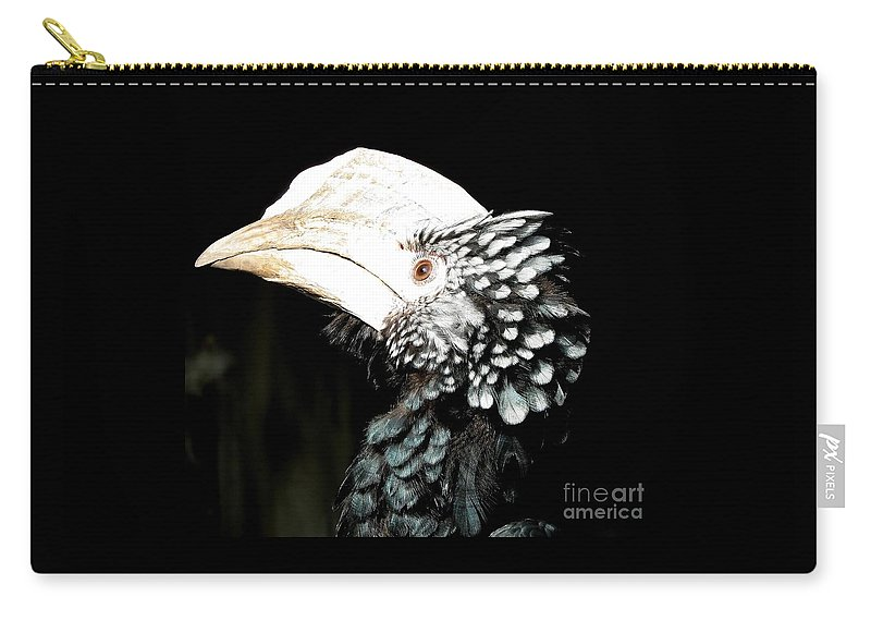 Hornbills Carry-all Pouch featuring the photograph Hornbill Bird by Rose Santuci-Sofranko