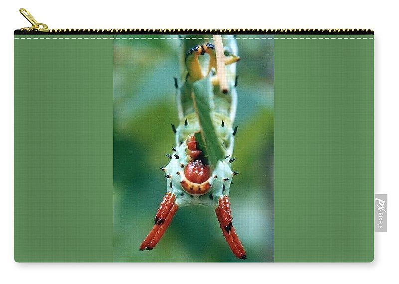 Carry-all Pouch featuring the photograph Horned Devil Catipillar 3 by J M Farris Photography