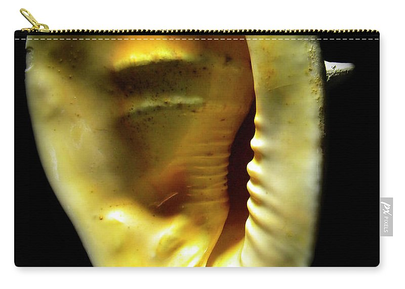 Frank Wilson Carry-all Pouch featuring the photograph Horned Helmet Shell Cassis Cornuta by Frank Wilson