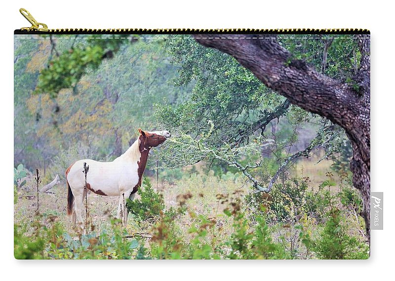 Carry-all Pouch featuring the photograph Horse 018 by Jeff Downs
