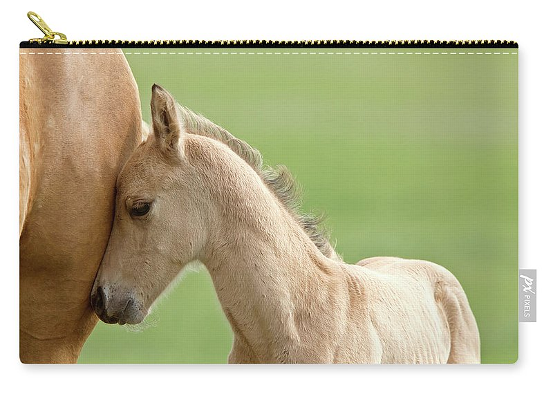 Horse Carry-all Pouch featuring the digital art Horse And Colt by Mark Duffy