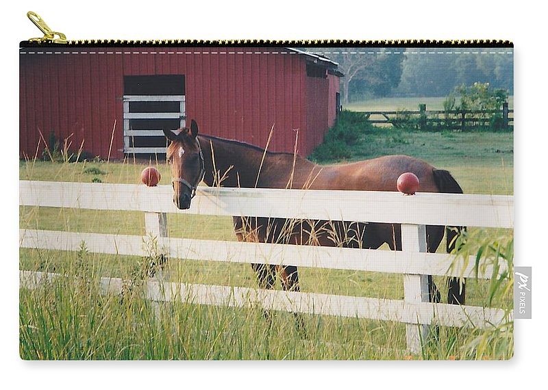 Landscape Carry-all Pouch featuring the photograph Horse And The Barn by Michelle Powell