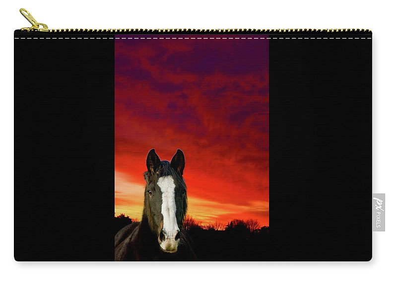 Horse Carry-all Pouch featuring the photograph Horse At Sunset by Phil Child
