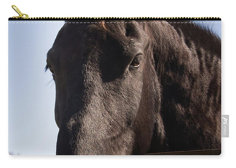 Horse Carry-all Pouch featuring the photograph Horse By A Fence. by Diane Schuler