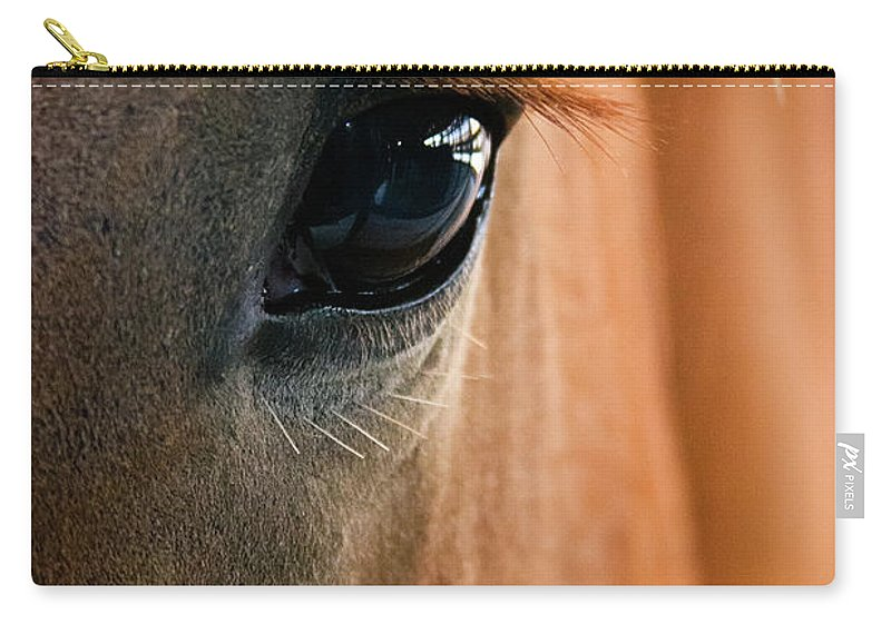 3scape Photos Carry-all Pouch featuring the photograph Horse Eye by Adam Romanowicz