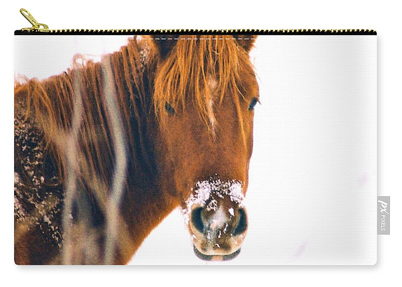 Horse Carry-all Pouch featuring the photograph Horse In Winter by Steve Karol
