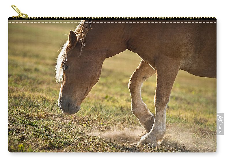 Horse Carry-all Pouch featuring the photograph Horse Pawing In Pasture by Steve Gadomski