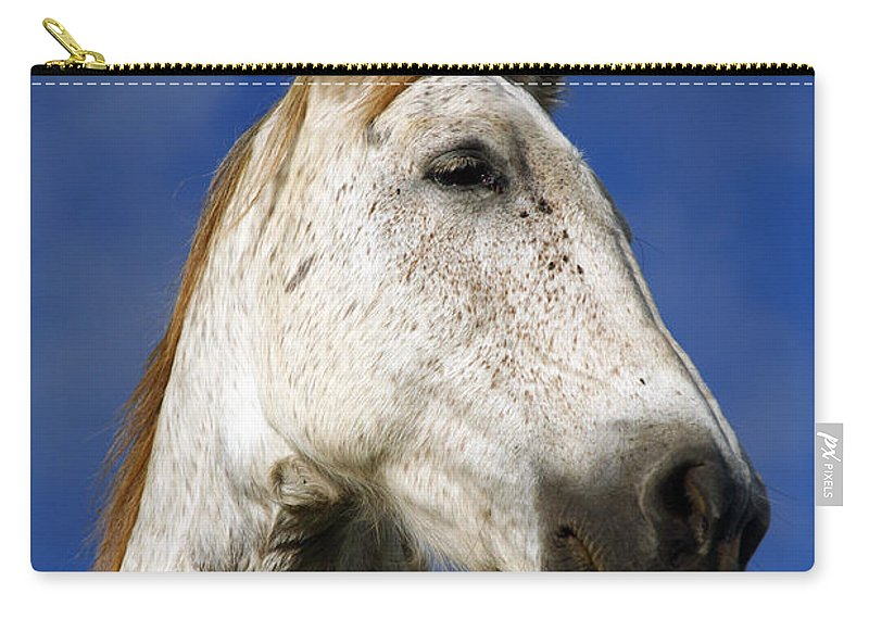 Animals Carry-all Pouch featuring the photograph Horse Portrait by Gaspar Avila