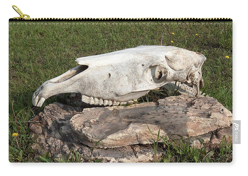 Horse Horses Spiritual Remembering Skull Spirits Ranch Herd Animals Carry-all Pouch featuring the photograph Horse Spirit 1 by Andrea Lawrence