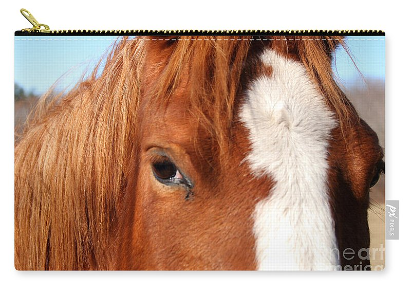 Horse Carry-all Pouch featuring the photograph Horse's Mane by Thomas Marchessault