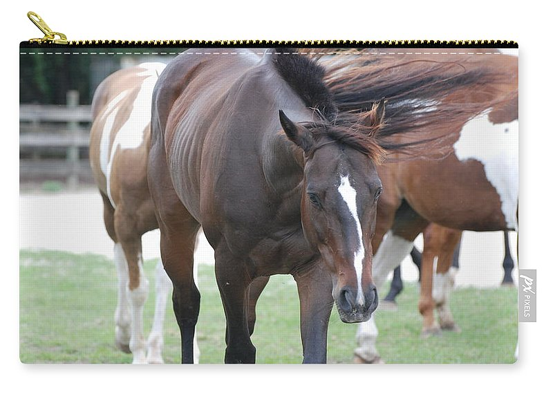Horses Carry-all Pouch featuring the photograph Horses by Rob Hans