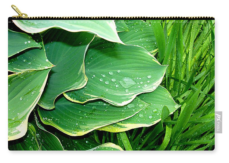 Hostas Carry-all Pouch featuring the photograph Hosta Leaves And Waterdrops by Nancy Mueller