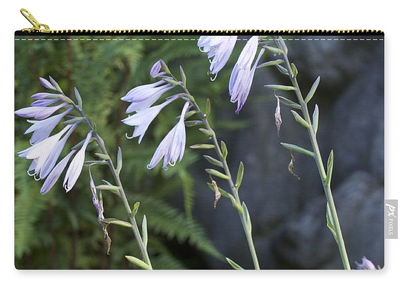 Hosta Photograph Carry-all Pouch featuring the photograph Hosta Watcher by Penny Neimiller