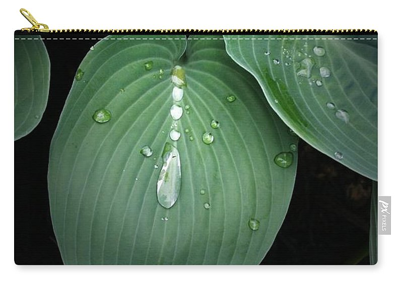 Hostas Carry-all Pouch featuring the photograph Hostas After The Rain by Tina Meador