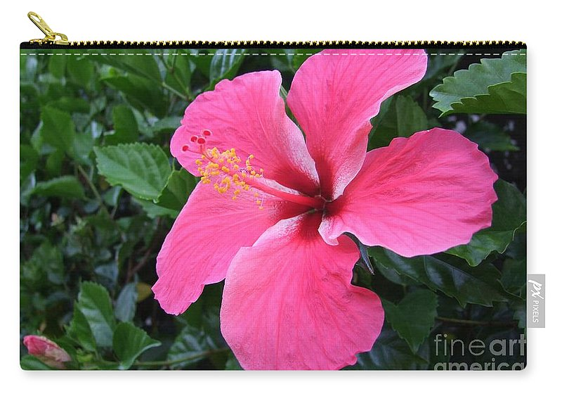 Pink Carry-all Pouch featuring the photograph Hot Pink Hibiscus 1 by Mary Deal